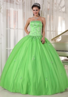 Appliques Spring Green Ball Gown Quinceanera Dress