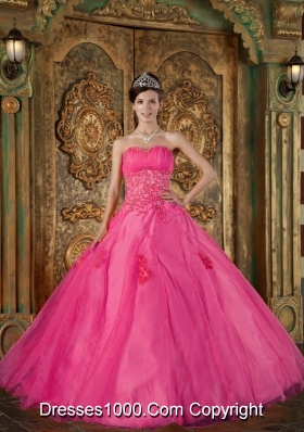 Hot Pink Ball Gown Sweetheart Quinceanera Dress  with Organza Appliques