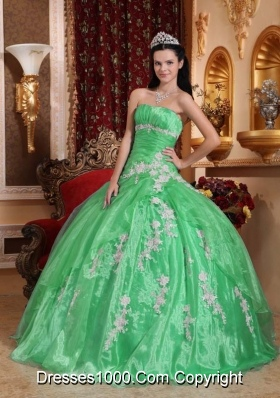 Beautiful Strapless Organza Quinceanera Dress with Appliques