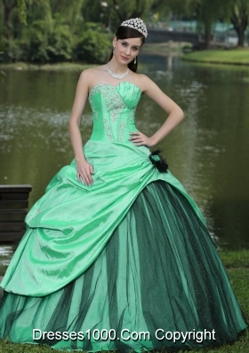 Turquoise Quinceanera Dress with Flowers and Pick-ups Custom Made