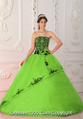 2014 Spring Green Strapless Satin and Organza Long Quinceanera Dresses