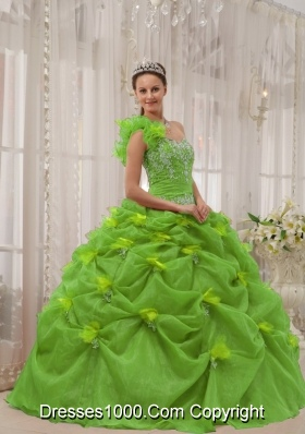 Ball Gown One Shoulder Appliques Long Quinceanera Dresses