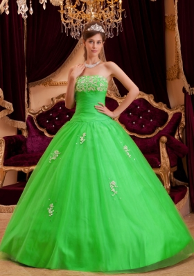 Cheap Strapless Appliques Princess 2014 Spring Green Quinceanera Dresses