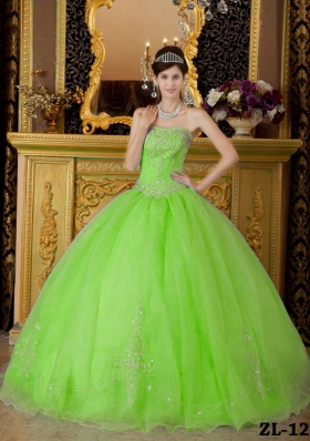Elegant Beading Organza Long Quinceanera Dresses with Strapless