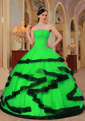 2014 Spring Ball Gown Strapless Organza Appliques Quinceanera Dresses