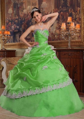 Discount Puffy Sweetheart Floor-length Appliques Quinceanera Dresses