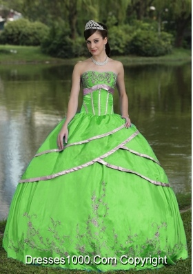 Designer Embroidery Taffeta and Satin 2014 Quinceanera Gowns