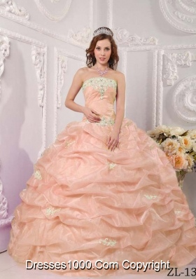 Exclusive Strapless Organza Sweet Sixteen Dresses with Appliques and Pick-ups