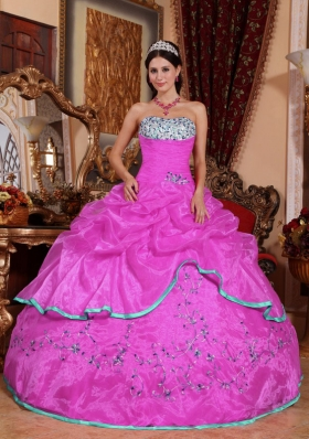 Hot Pink Ball Gown Strapless Appliques 2014 Spring Quinceanera Dress