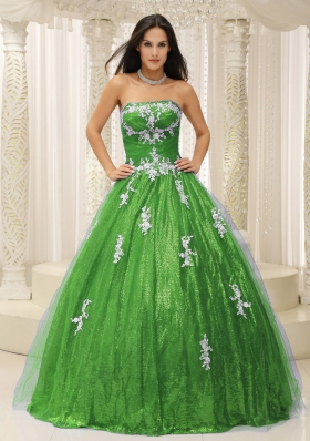 2014 Wonderful A-line Quinceanera Dresses with Appliques and Paillette Over Skirt