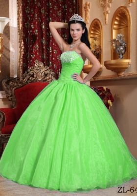 2014 Spring Green Puffy Strapless Appliques Quinceanera Dress with Beading