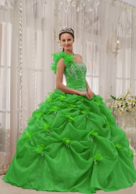 2014 Exclusive Puffy One-shoulder Beading and Appliques Green Quinceanera Dress with Pick-ups