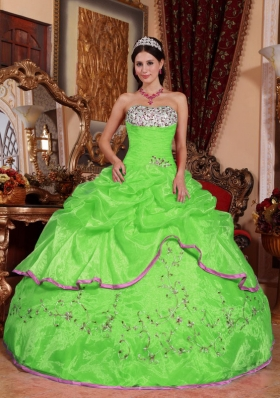 Brand New Puffy for 2014 Appliques for Green Quinceanera Dress with Pick-ups