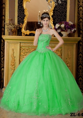 Petty Spring Green Puffy Strapless with Beading Decorate for 2014 Quinceanera Dress