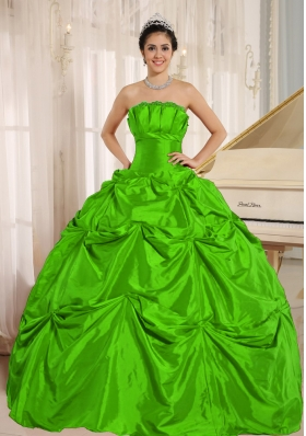 Petty Green Puffy 2014 Quinceanera Dress with Pick-ups For Custom Made