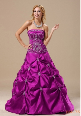 Embroidery Decorate Bodice Pick-ups A-line Floor-length 2013 Prom / Evening Dress