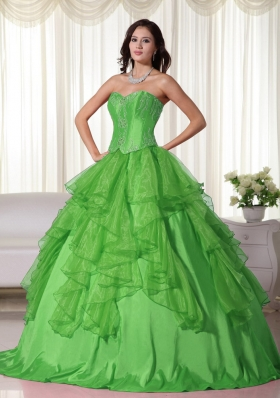 Green Ball Gown Sweetheart Organza Quinceanera Dress with Embroidery