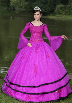 V-neck Appliques Decorate Quinceanera Dress with Detachable Sleeves