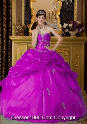 Sweetheart Fuchsia Organza Appliques Decorate Dresses For a Quince