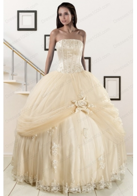 Elegant Appliques and Hand Made Flower Champagne Quince Dresses