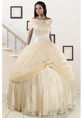 Fashionable Appliques 2015 Champagne Quinceanera Dress with Wraps