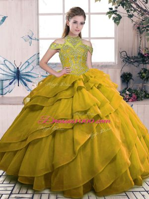 Brown Sleeveless Organza Lace Up Quinceanera Dresses for Sweet 16 and Quinceanera