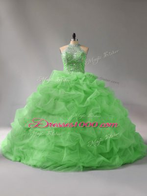 Sweet 15 Quinceanera Dress Organza Court Train Sleeveless Beading and Pick Ups