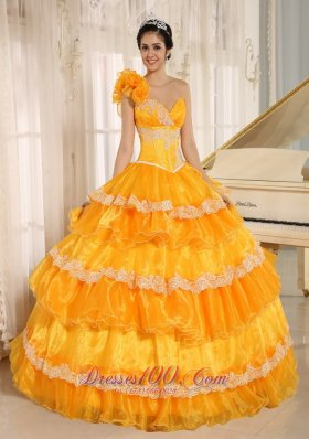 Flowers One Shoulder Appliques and Ruffled Layers Quinceanera Dress