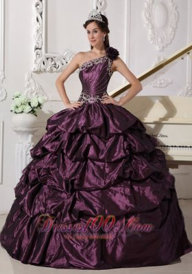Appliques and Pick-ups Dark Purple Dresses 15 One Shoulder
