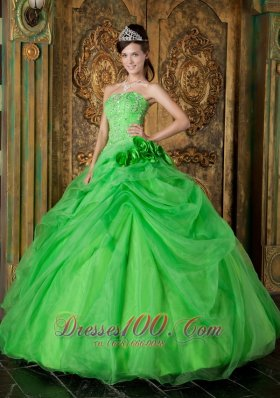 Spring Green Organza Beading Flower Quinceanera Dresses