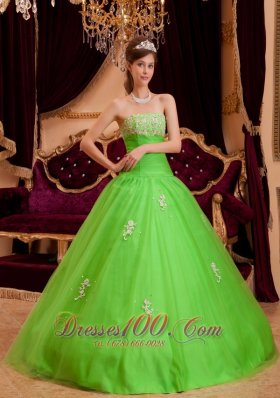 Spring Green Quinceanera Dress A-line Appliques Strapless