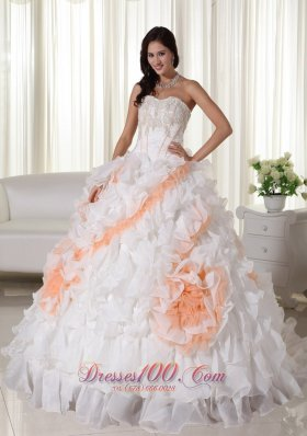 Colorful Puffy Organza Ball Gown Appliques Wedding Dress
