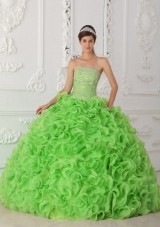 Organza Spring Green Ball Gown Strapless Sweet Sixteen Dress with Beading
