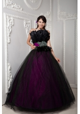 2014 Popular Colourful Puffy Strapless Beading Quinceanera Dress with Feather
