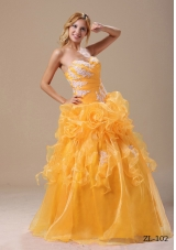 Gold Affordable Princess Appliques For 2014 Quinceanera Dresses