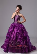 Embroidery and Pick-ups Eggplant Purple Sweep Train Dress for 15