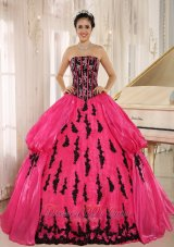 Hot Pink Embroidery Decorate Organza for Quinceanera Dress
