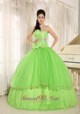 Beaded Bowknot Organza for Spring Green Quinceanera Dress