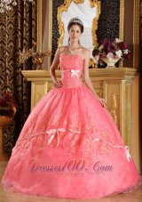 Watermelon Red Appliques Organza Dress for Quinceanera