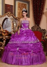 Plus Size Fuchsia Organza Appliques Quinceanera Gowns