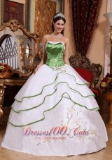 Spring Green and White Organza Embroidery Sweet 15 Dress