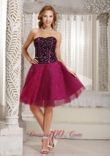 Fuchsia Beaded Cocktail Dress Tulle Corset 2013