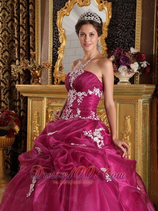 Brand New Fuchsia Quinceanera Dress Strapless Pick-ups Embroidery