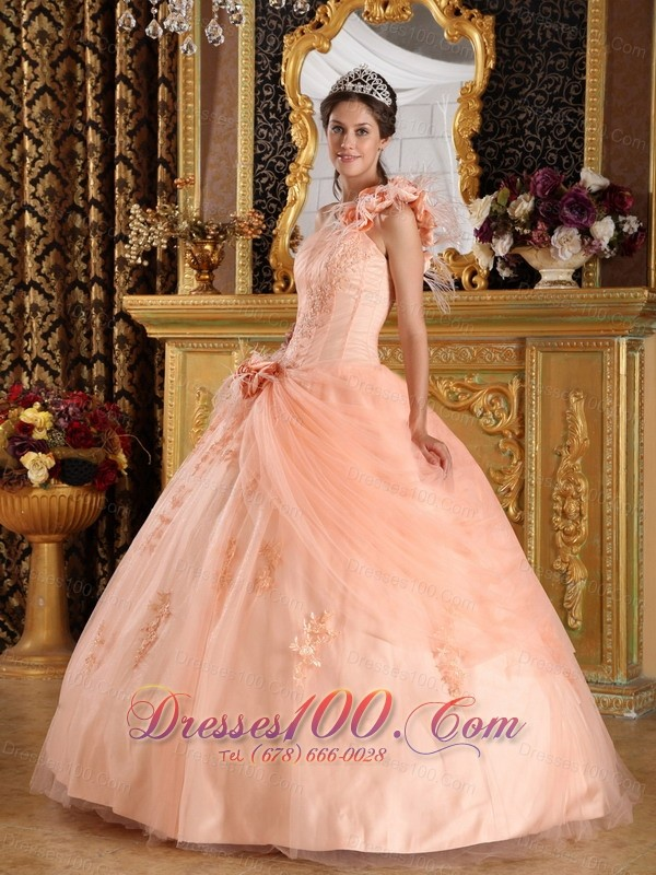 Pink Quinceanera Dress One Shoulder Appliques Tulle