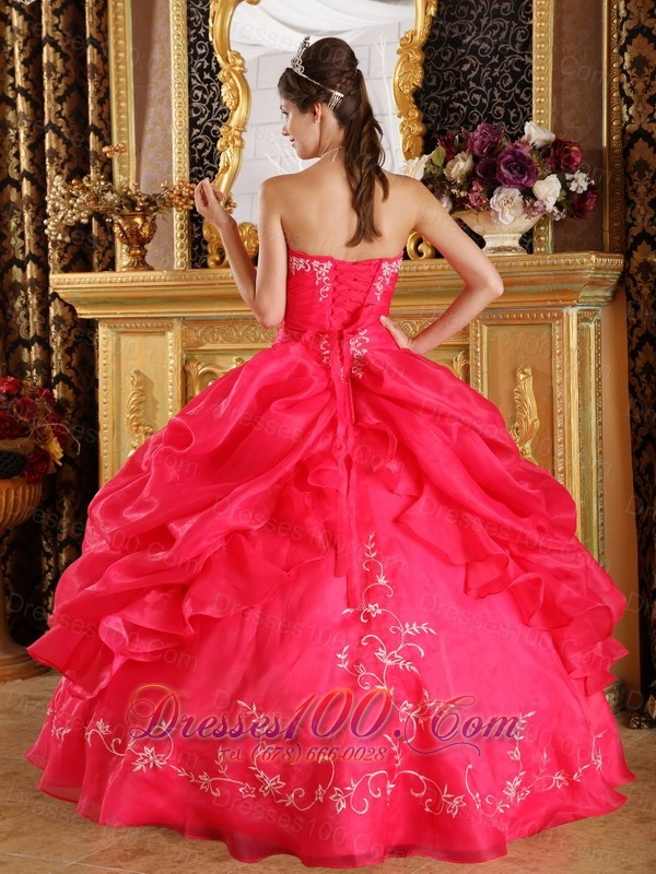 Red Embroidery and Pick-ups Dresses 15 Organza
