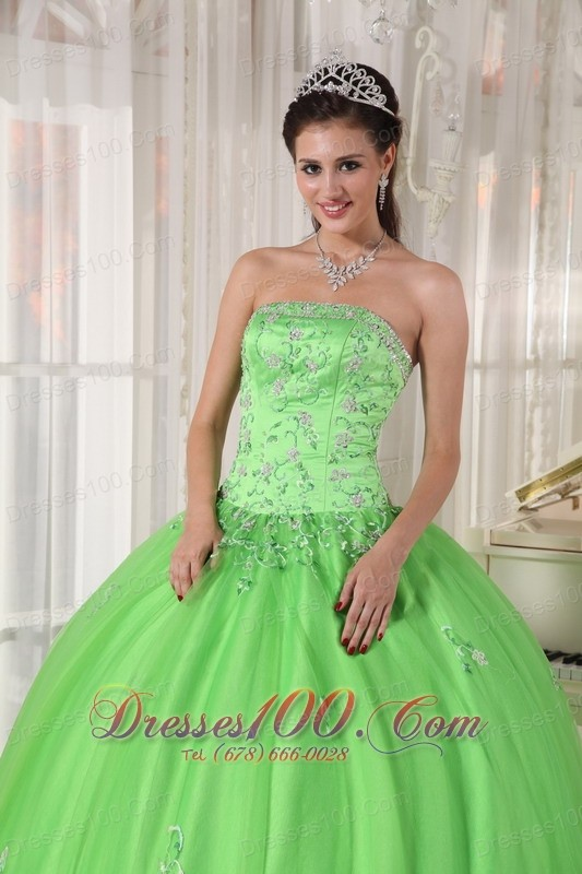 Spring Green Dresses Quinceanera Taffeta and Tulle Appliques