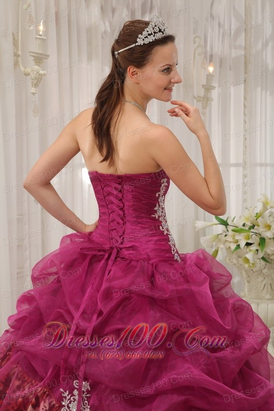 Sweet Sixteen Quinceanera Dresses Burgundy Zebra Decorate