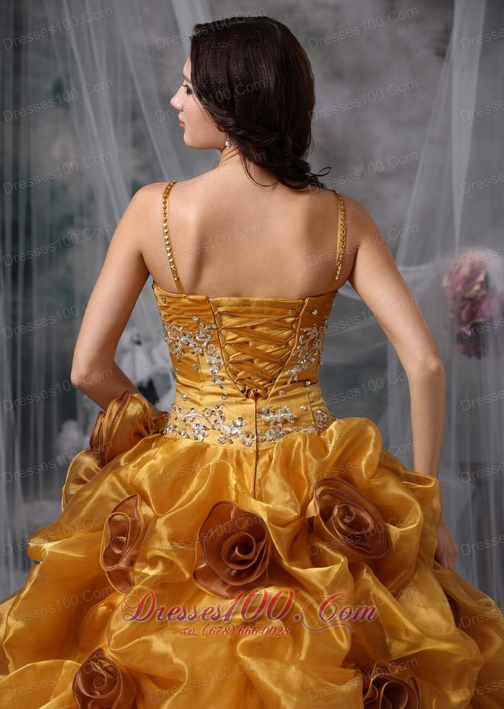Brown Ball Gown Straps Organza Beading Quinceanera Dress