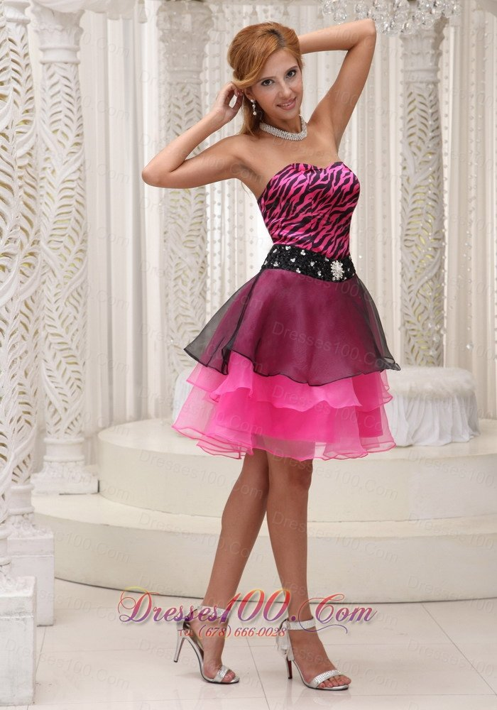 Zebra And Orange Prom Dresses 91