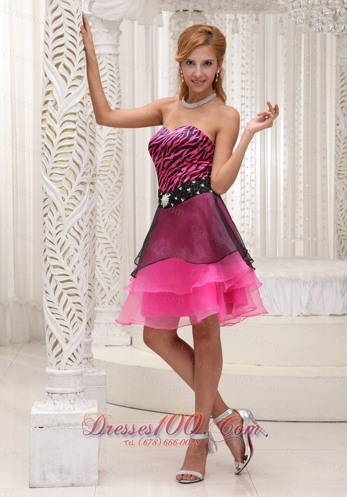 Zebra and Organza Hot Pink and Black Prom / Cocktail Dress ...